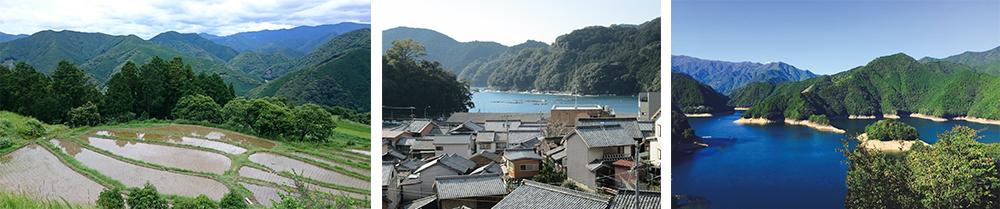 写真は左から和歌山県(田辺市提供)、三重県(尾鷲市提供)、奈良県